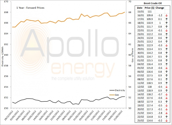 Energy Market Analysis - 25-02-2013