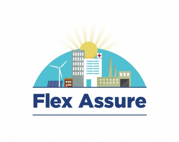 Flex Assure logo