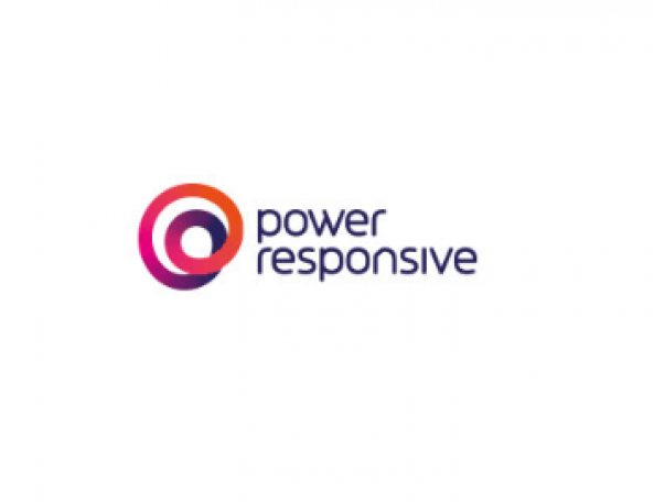 Power Responsive Logo